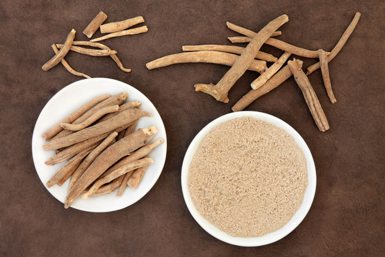 7 Surprising Health Benefits of Eleuthero (Siberian Ginseng)