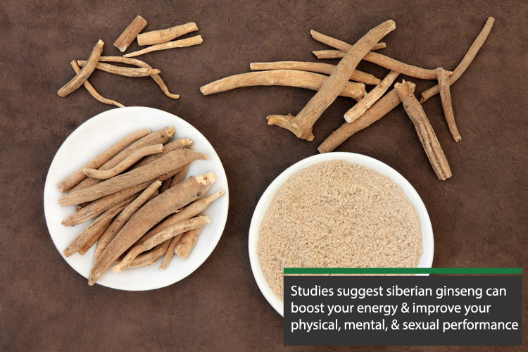 studies suggest siberian ginseng can boost your energy, and physical / sexual performance