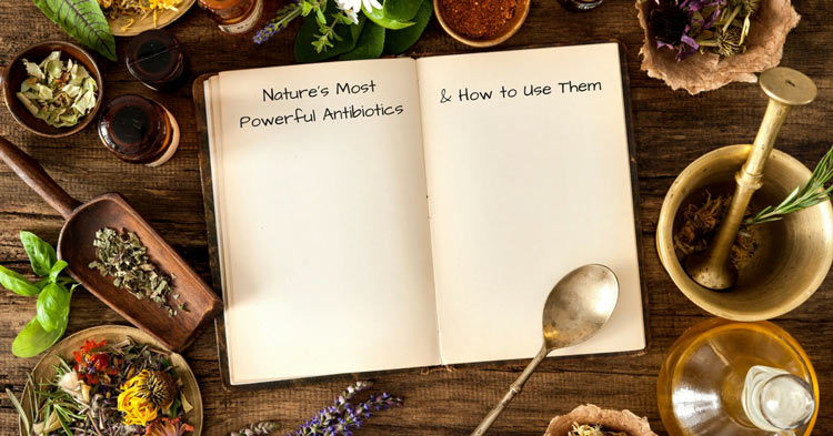 Nature's most powerful natural antibiotics